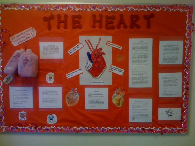 The Heart Image
