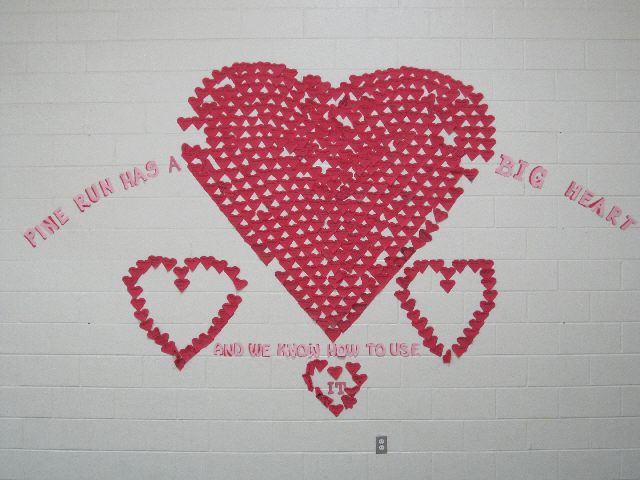 Heart Wall Image