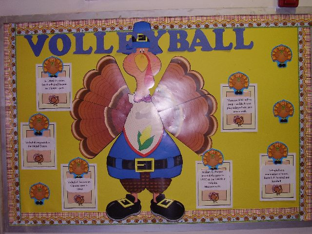 Volleyball Turkey Image