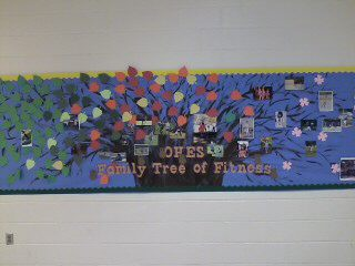 OHES Family Tree of Fitness Image