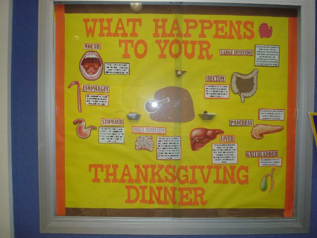 What happens to your thanksgiving dinner? Image