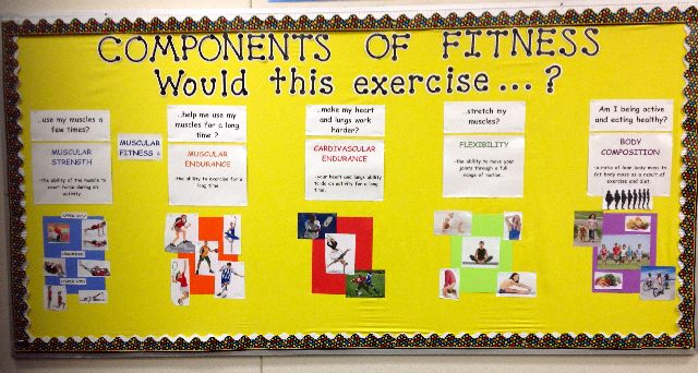 Components Of Fitness Image