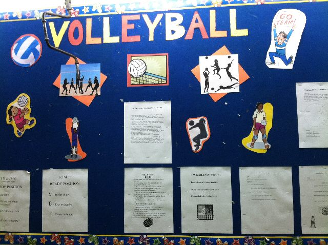 Volleyball Cues and Help Image