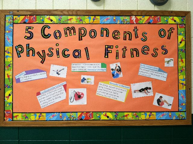 5 Components Of Physical Fitness Image