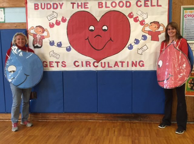 Buddy the Blood Cell Get's Circulatiing Image