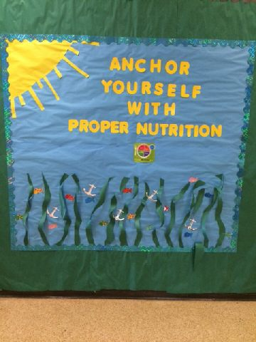 Anchor yourself with proper nutrition Image