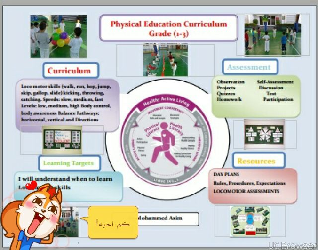 physical education curriculum display example Image