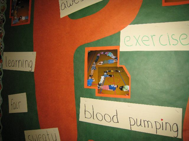 PE Words from Students (for Parent's Night) Image