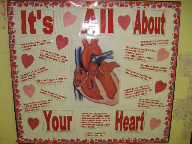preschool valentines day bulletin boards
