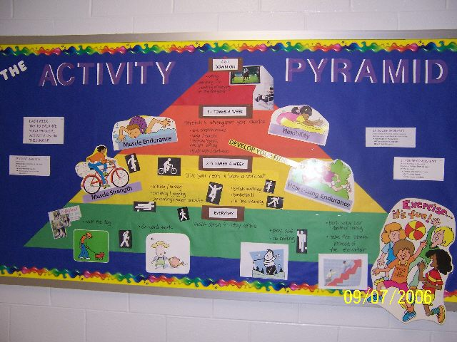 Classroom Decoration Ideas For Competition ~ Pec bulletin boards for physical education