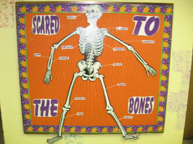 Scared to The Bones (Halloween) Image