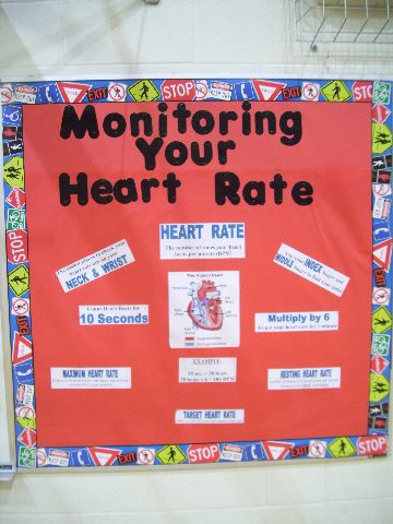 Monitoring Your Heart Rate Image