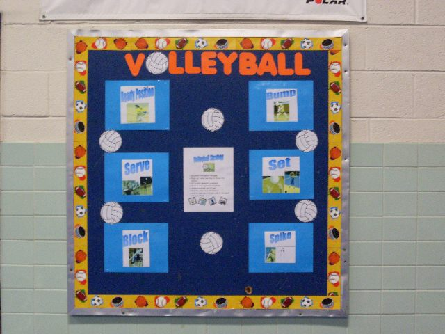 Volleyball Skills Image