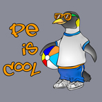 PE is Cool Tshirt